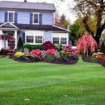 curb appeal tricks for a large front yard