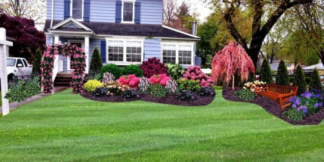 Curb Appeal Tricks for Large Front Yards